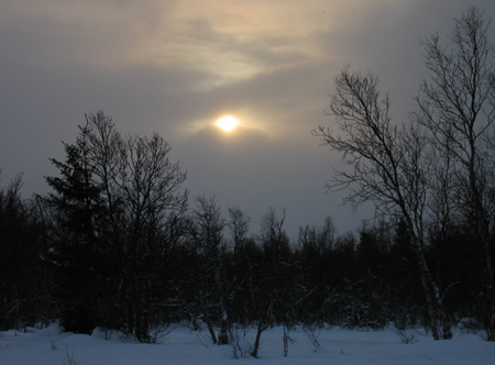 20080103sol.jpg